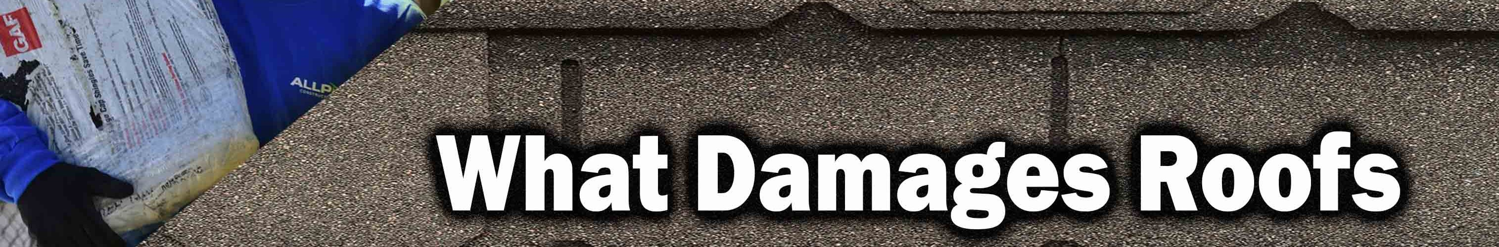 Truth About What Damages Your Roof and What Doesn't