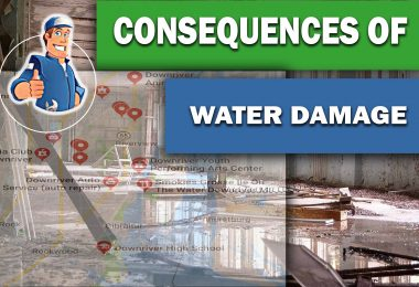 Consequences of Long-Term Water Damage