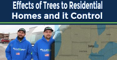 Major Effects of Trees to Residential Roofing System and How to Control Them